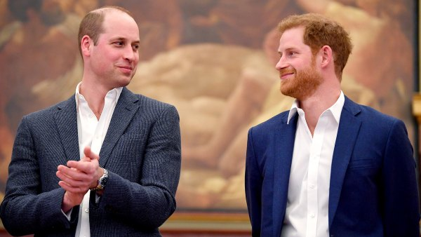 Prince William and Prince Harry Reconnected Via 'Video Calls' Over the Holidays Amid Efforts to Repair Their Relationship