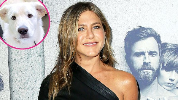 Jennifer Aniston Works Out With Her Dog Lord Chesterfield