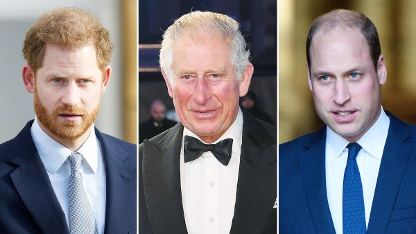 Prince Harry Feels Let Down by Father Prince Charles and Talks Brother Prince William