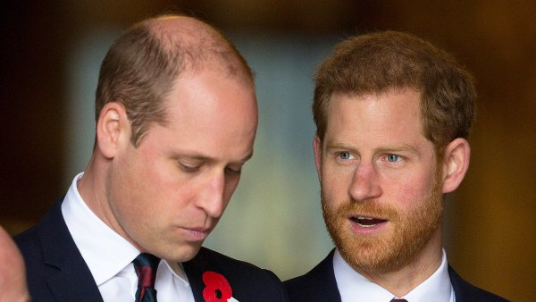 Prince Harry Tried to Help Prince William From Being Trapped as a Royal