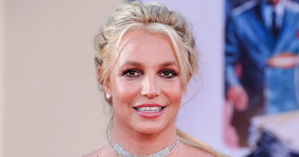 Britney Spears Breaks Her Silence During Conservatorship Hearing: 'I Want to Sue My Family'