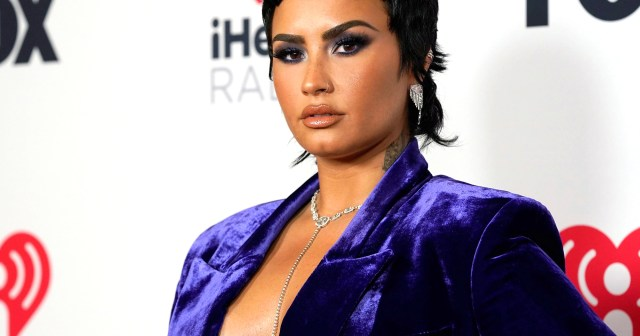 Demi Lovato's Frozen Yogurt Controversy: What to Know About Their Feud With The Bigg Chill Shop.jpg