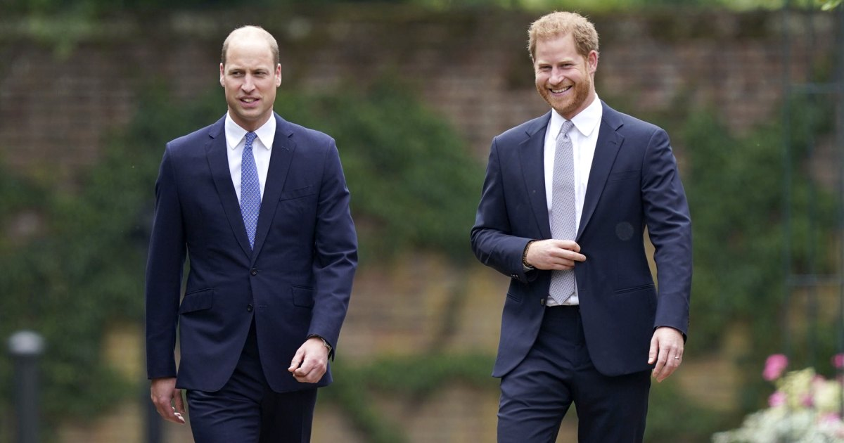 Prince Harry tried to 'engage' with Prince William at the statue's unveiling
