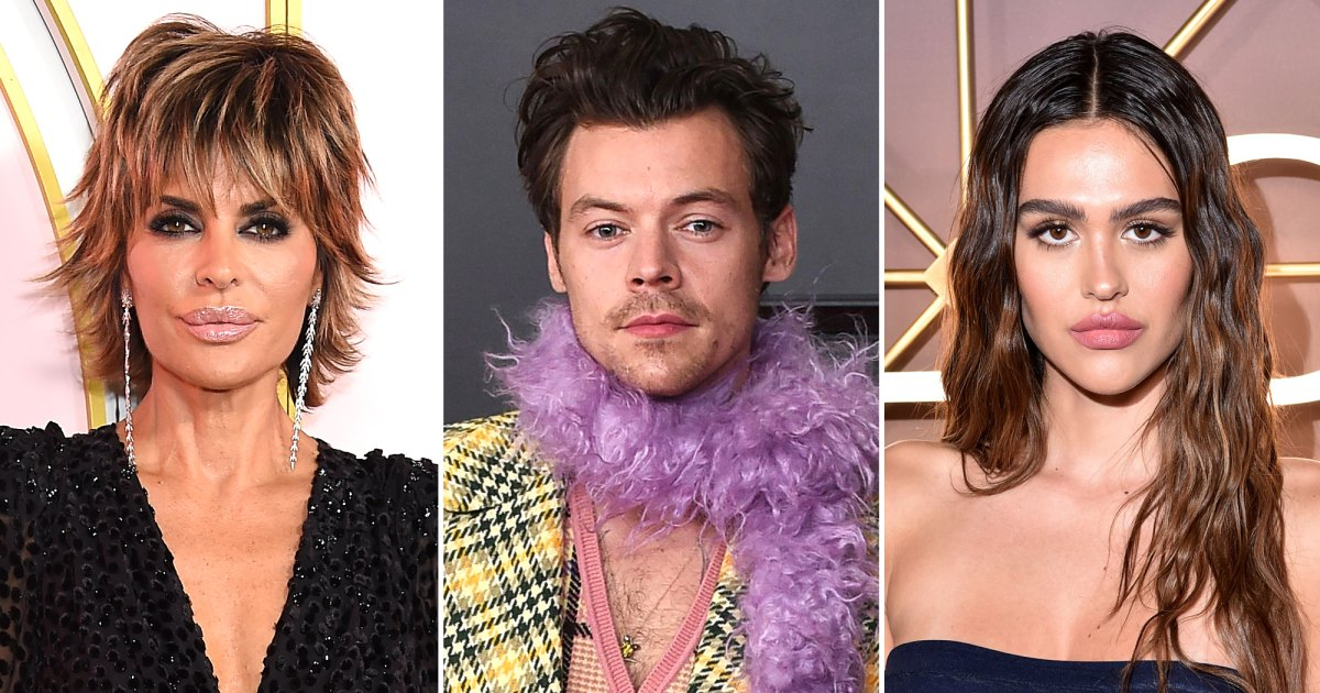 Lisa Rinna Continues to Support Harry Styles After Daughter Amelia Gray Hamlin Split From Scott Disick