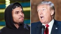 Chris Brown and Donald Trump