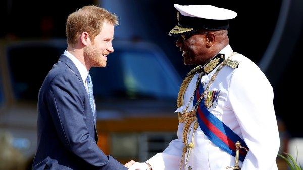 prince-harry-handshake-zoom-98f2233e-cb96-44d8-906e-fbd1f3fed755