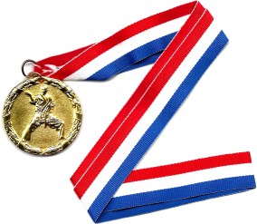 gold medal for the Feb 2015 In-house Tournament at USMALtd