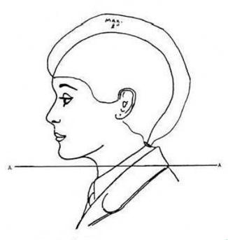 Navy Haircut Standards | DODReads
