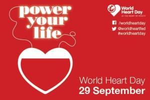 आज विश्व मुटुरोग दिवस ,नेपालमा पनि विभिन्न कार्यक्रम गरेर मनाईदै