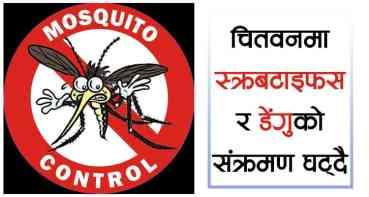 चितवनमा स्क्रबटाइफस र डेंगुको संक्रमण घट्दै