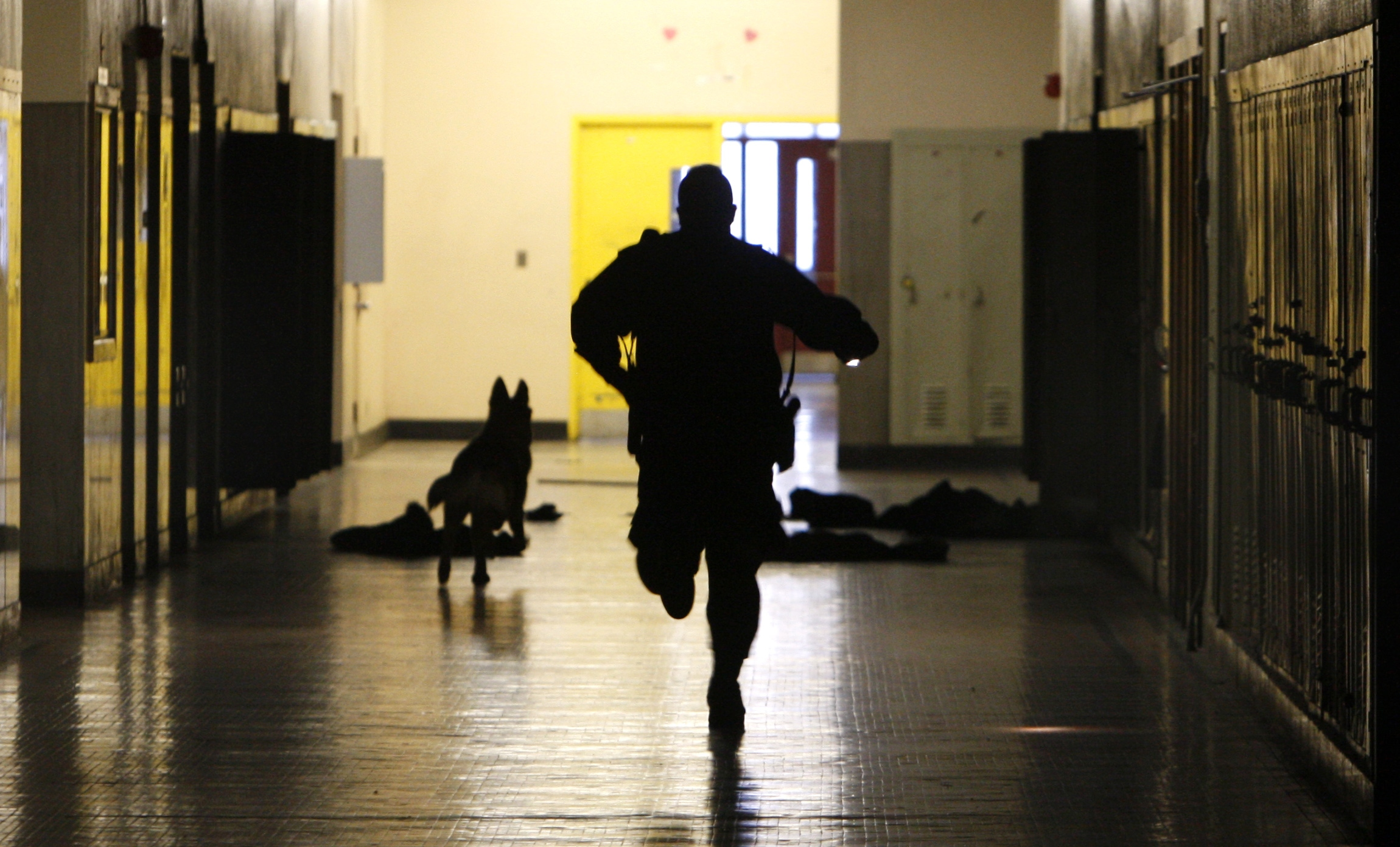 School Crime And Violence On The Rise For Students And