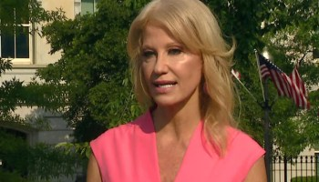 Conway says Dems 'starting to lose it,' as they realize Trump will be re-elected