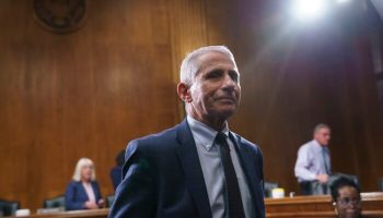 Newly Disclosed Documents Show Fauci Lied: Sen. Paul