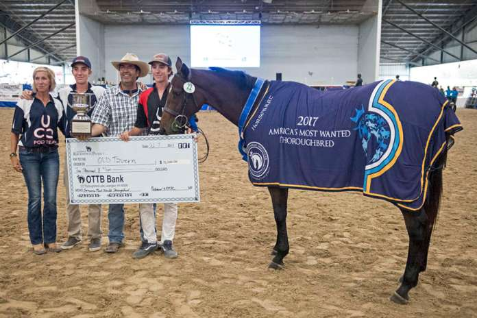 2017 Thoroughbred Makeover champion Old Tavern, pictured with Joanna, Harry, Rob and Charlie Caldwell. ©Anne Litz.