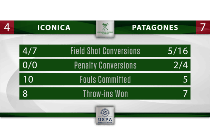 Iconica Patagones Stat Graphic