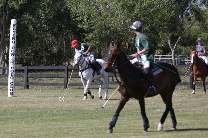 Action on the grass at Flying Cow Polo Club.