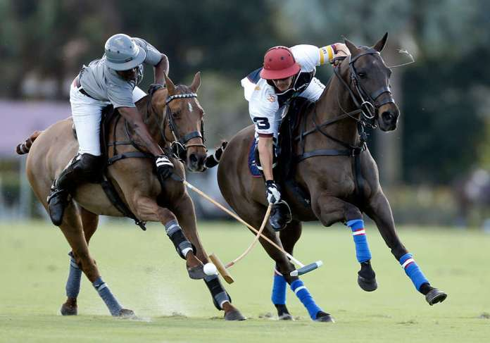 Coquito has led Gringo Colombres' string in high-goal play in the USA. ©David Lominska