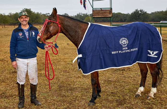 Best Playing Pony Willie Nelson, played and owned by Nadir Khan.