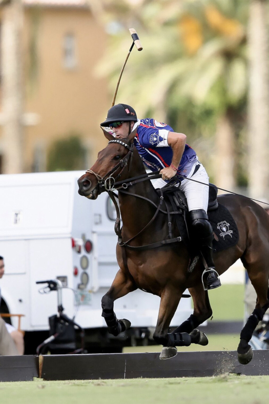 Spectators watch as players and polo ponies play as a unit.