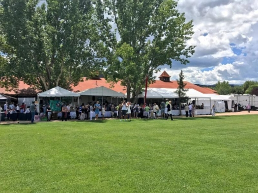 A record crowd for Sunday's final and Aspen Valley Hospital Foundation fundraiser.