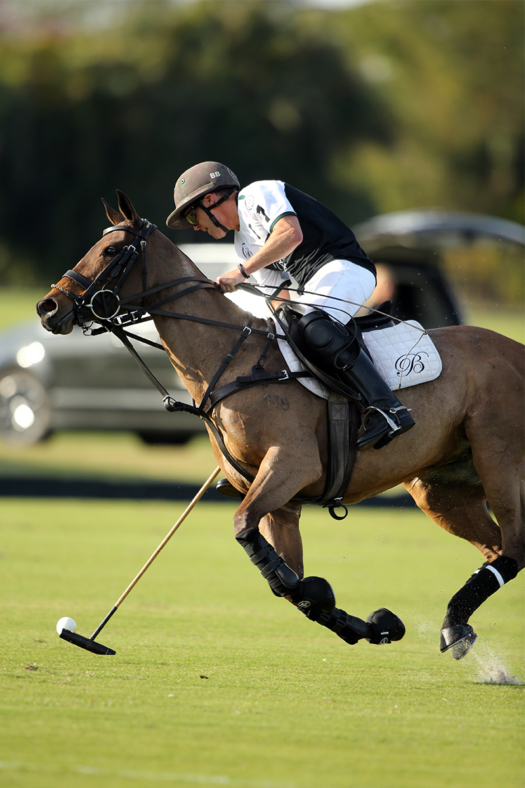 Bill Ballhaus focused on the ball during the 2021 Ylvisaker Cup with Beverly Polo. ©David Lominska