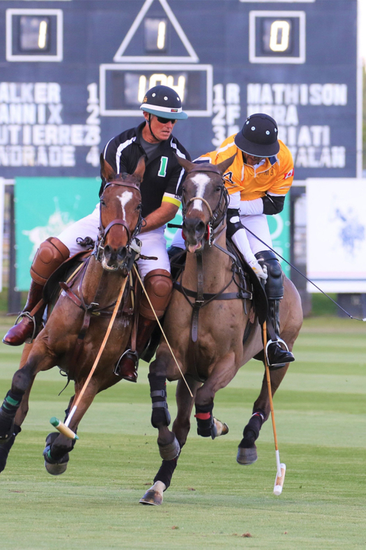 The quality of horses and the professionalism of players are always increasing at Eldorado Polo Club.