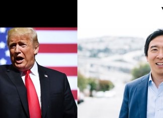 Donald Trump Andrew Yang 2020