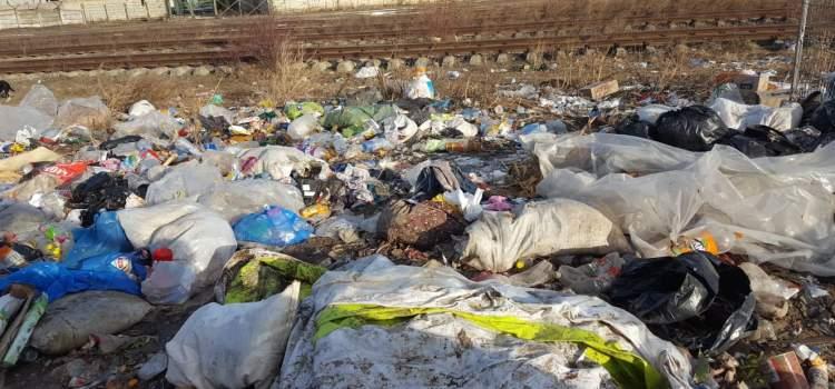 Senator Dan Lungu: La Hîrlău, noroaiele nu se văd din cauza gunoaielor