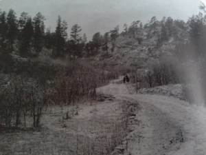 The view from the caretaker's house. Early 1900s. PPLD Special Collections