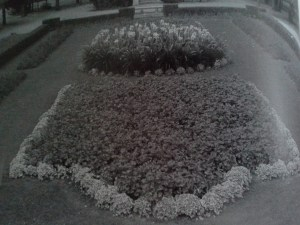 The Victory Garden, 1932. PPLD Special Collections.