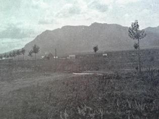 New trees planted along the main road in Fountain Colony. Note the McAllister House in the background--the only house standing so far. Photo courtesy of the Pioneers Museum.