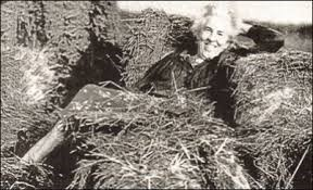 ruth stout hay