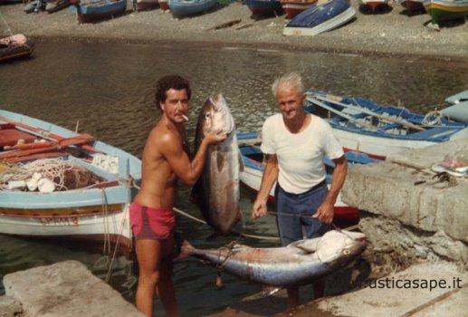 Ricciole pescate a traina con esca viva