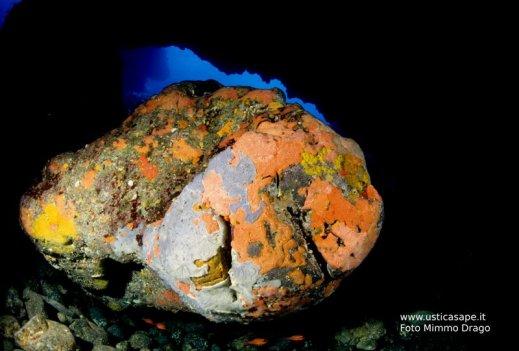 Ustica, fondali marini