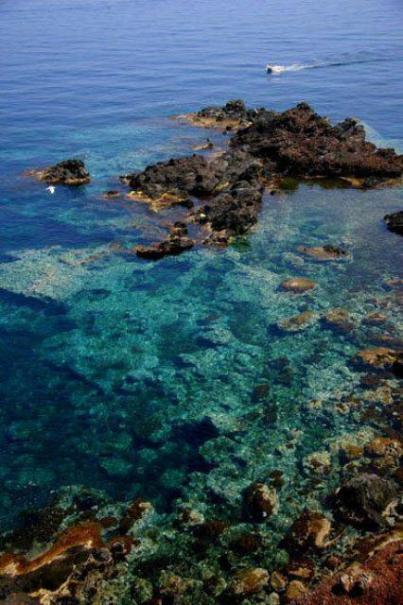 Ustica  scogliera - trasparenza acque