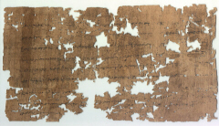 Papyrus (click to see larger image)