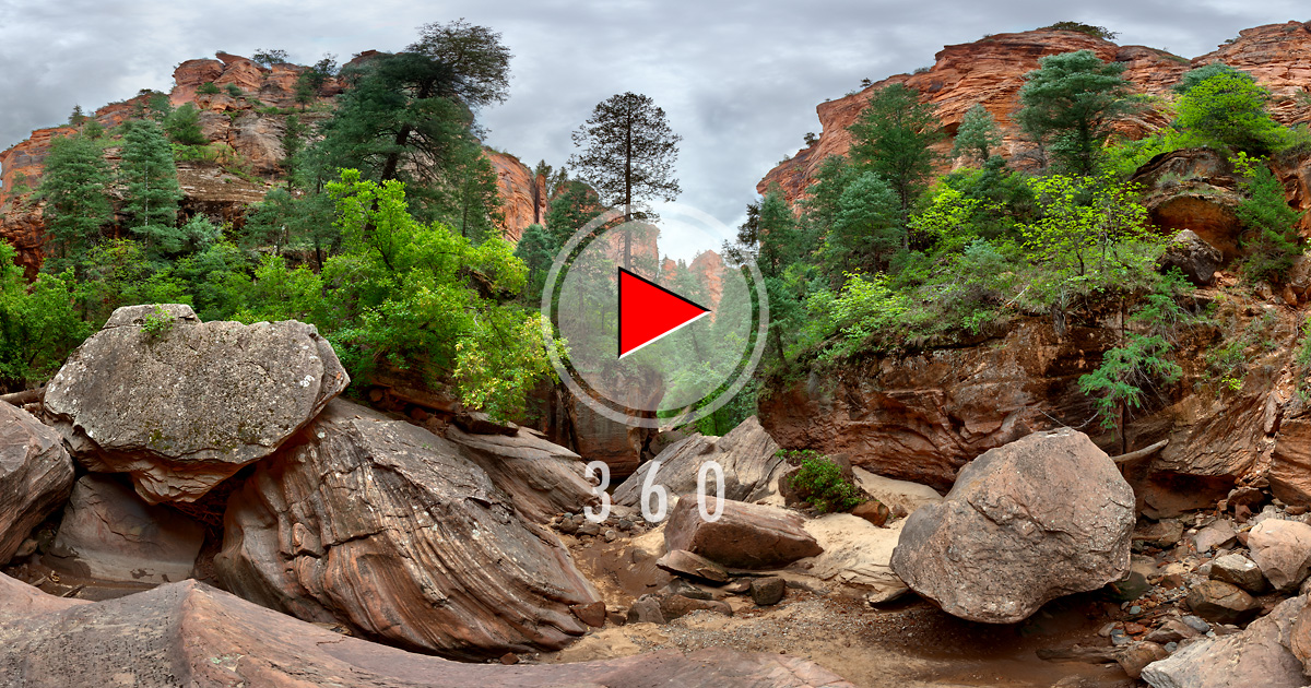 Zion National Park 3d Panorama Left Fork North Creek