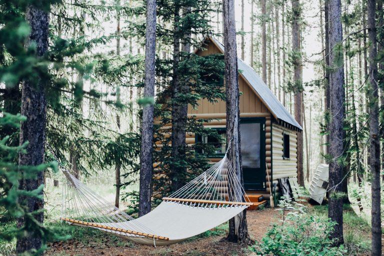 Amaca in mezzo al bosco