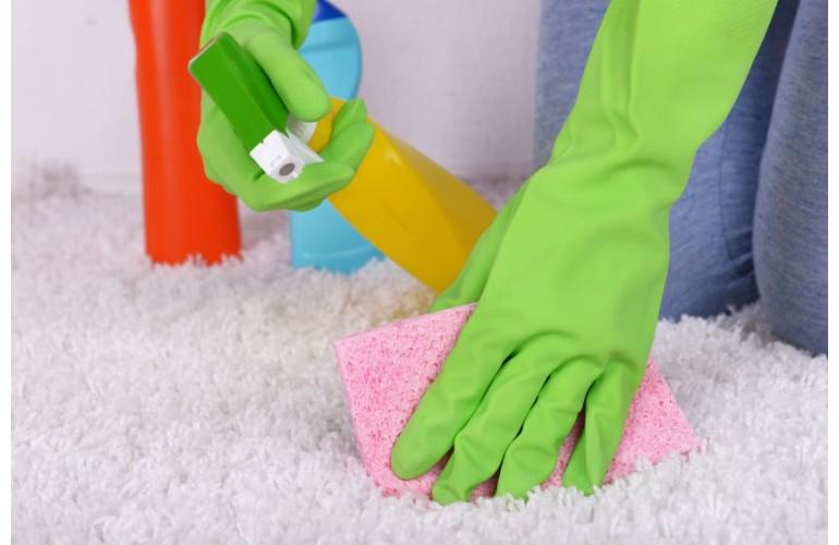 Nettoyer Votre Moquette Nos Astuces Pour Le Nettoyage De