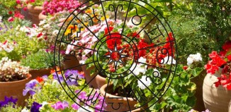 Nedeljni horoskop za period od 15 - 21 Maja