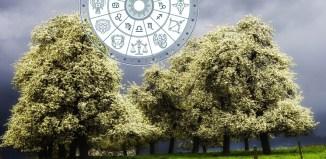 Nedeljni horoskop za period od 29 maja do 4 juna 2020