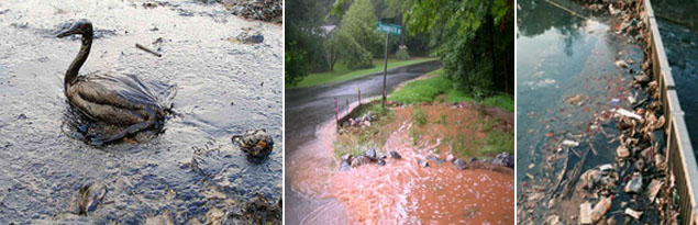 Images of polluted stormwater runoff and effects.