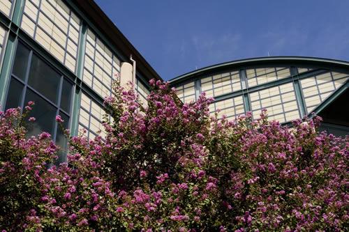 Visit Main Campus