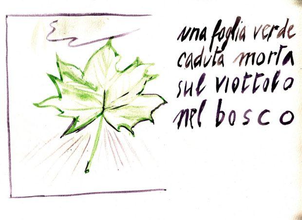 haiku-approssimativo-img