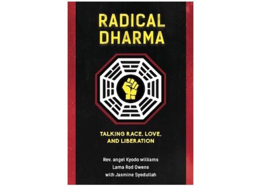 Cover of Radical Dharma