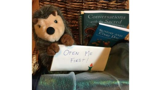 "Hedgehog stuffie holding an envelope labeled ""Open Me First!"""