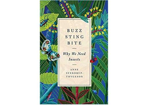 Cover of Buzz, Sting, Bite: Why We Need Insects