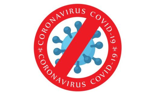 A blue representation of a coronavirus with a red international NO symbol overlying it