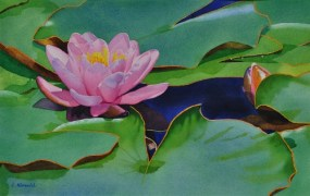 Watercolor of water lilies and leaves, signed E. Kincaid