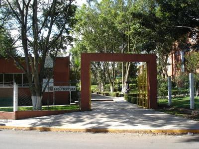 Por Gestión Del Ayuntamiento Impartirá Uv Los Talleres Libres De Arte En Córdoba